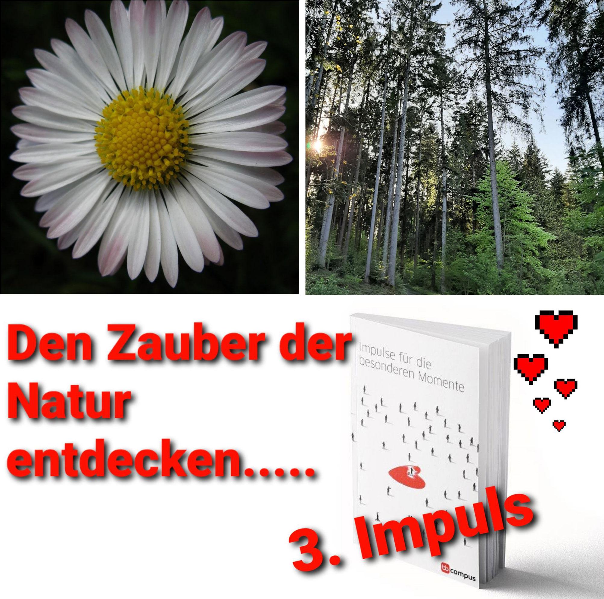 Marion Natur